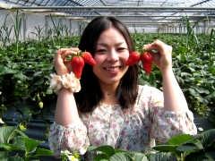 大洗ベリーズのイチゴと記者