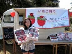 大洗ベリーズのイチゴをもつ記者