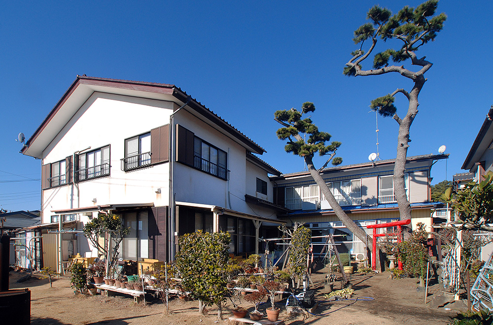 Shirahamasou